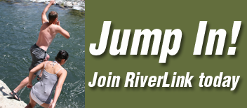 RiverLink_button